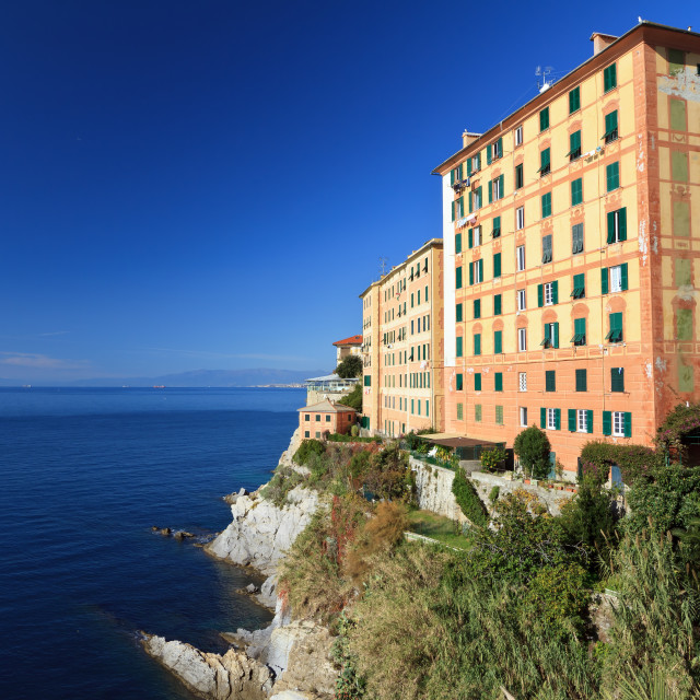 """view in Camogli"" stock image"