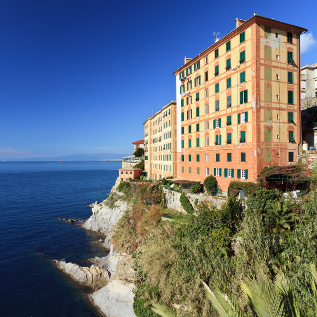 """homes in Camogli"" stock image"