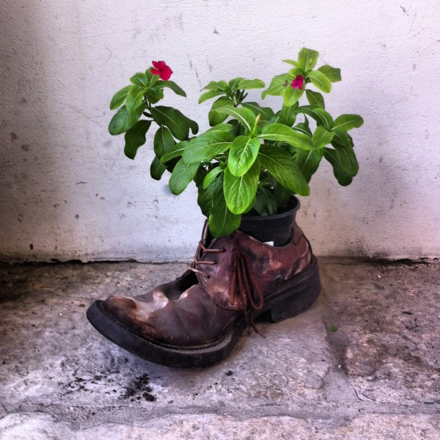 """""""Not such a smelly old boot"""" stock image"""