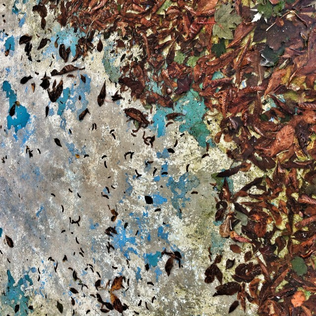 """Abstract autumn"" stock image"
