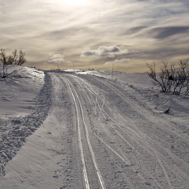 """Winter skiing"" stock image"