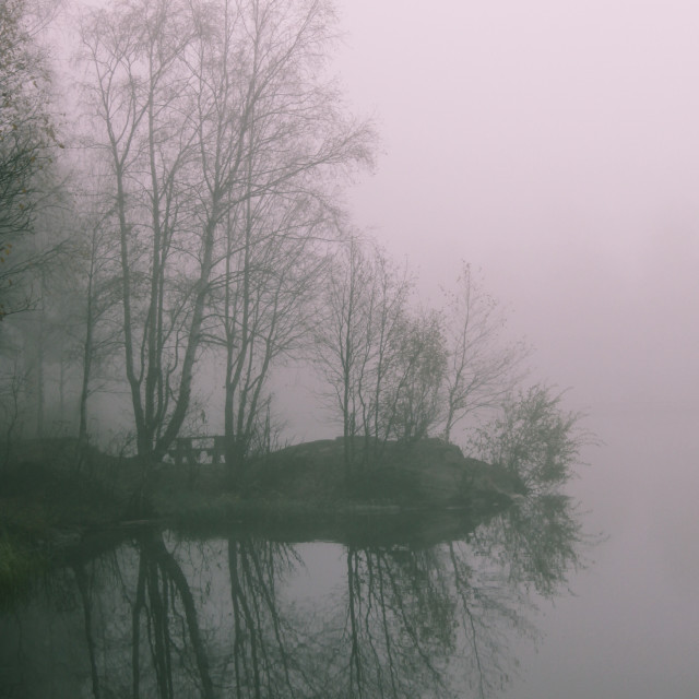 """Misty Pond"" stock image"