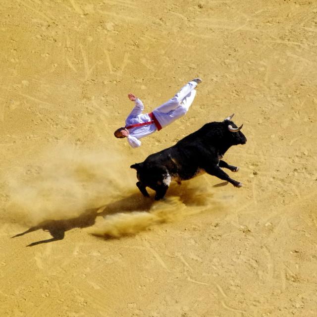 """Saltador 2"" stock image"