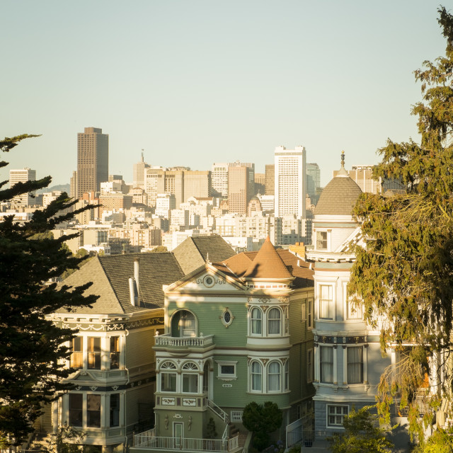 """Painted Ladies and San Francisco downtown"" stock image"