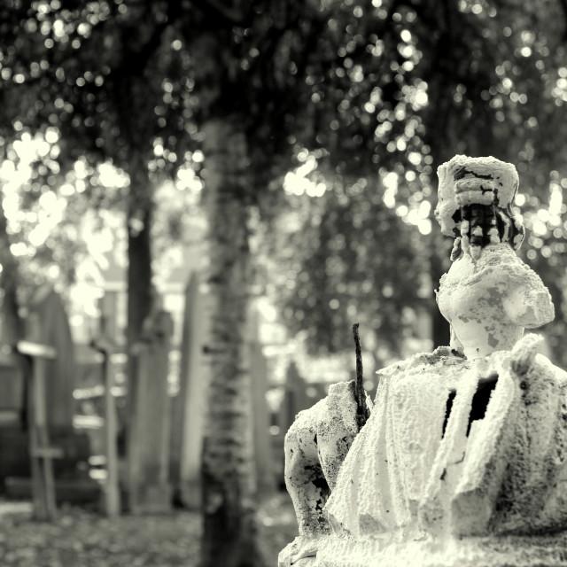 """Graveyard Girl"" stock image"