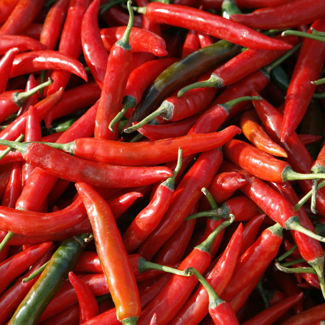 """Chillies"" stock image"