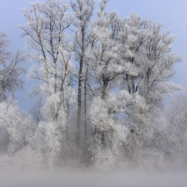 """Winter 4"" stock image"
