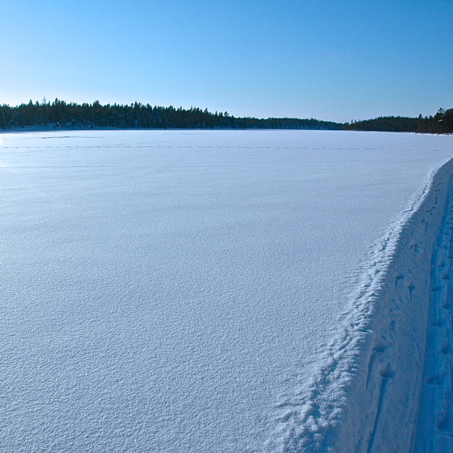 """Arctic Skiing"" stock image"