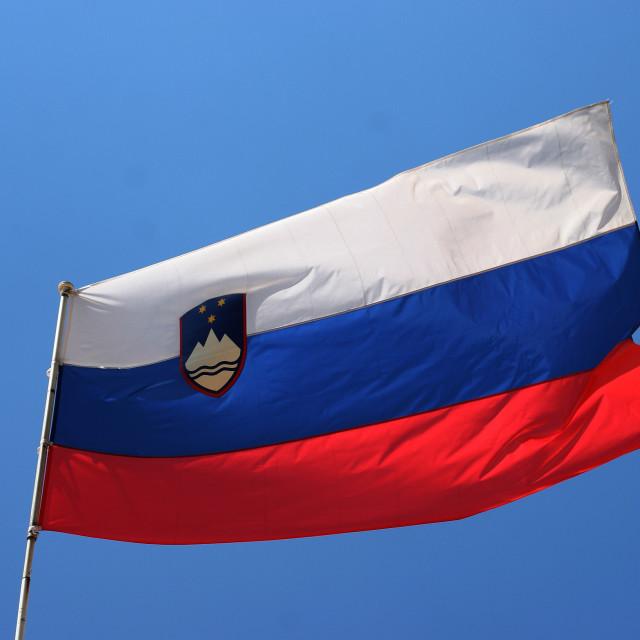 """Slovenian flag"" stock image"