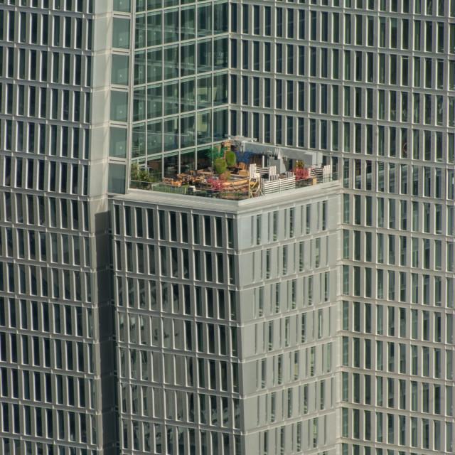 """""""rooftopgarden"""" stock image"""