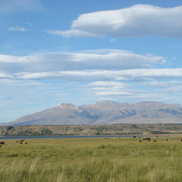 """""""Patagonia"""" stock image"""