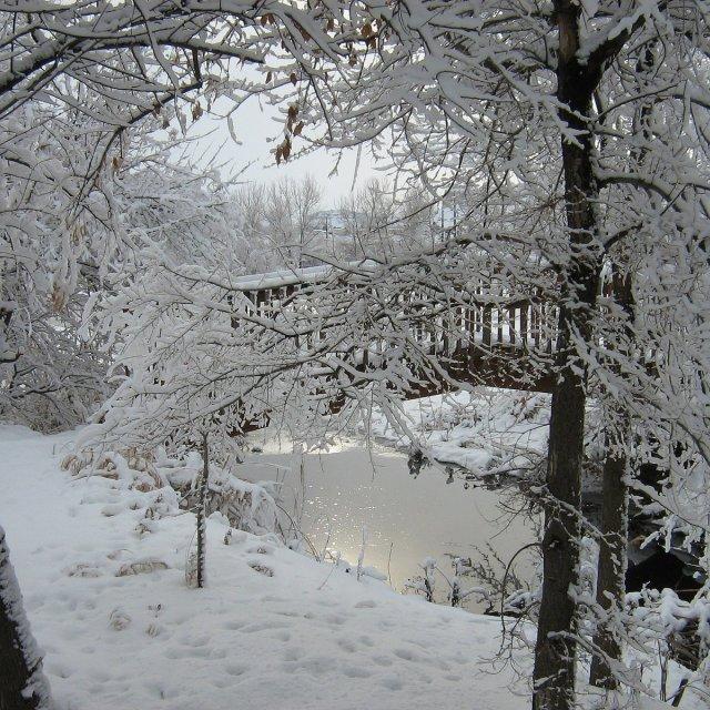 """Winters Wonder"" stock image"