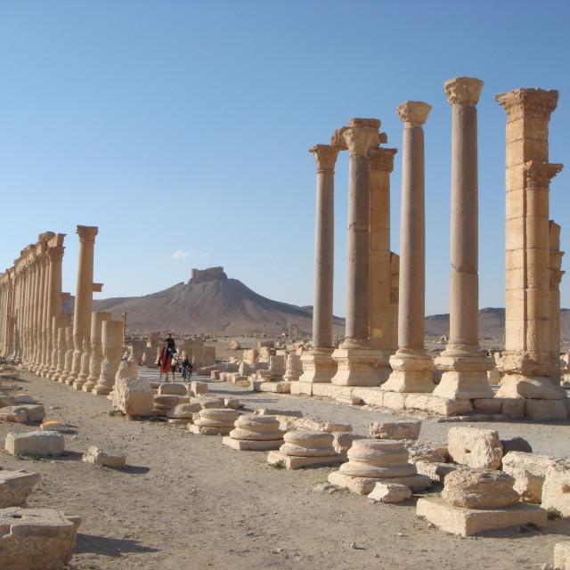 """""""Palmyra"""" stock image"""