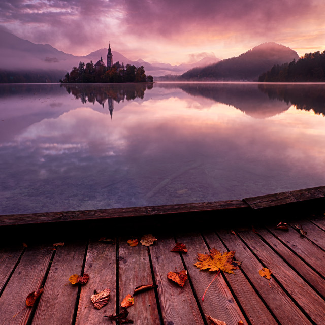 """Lake Bled Autumn"" stock image"