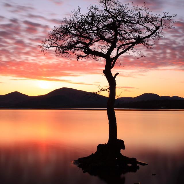 """Milarrochy bay Sunset"" stock image"