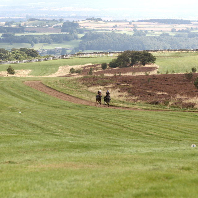 """Middleham Gallops4"" stock image"