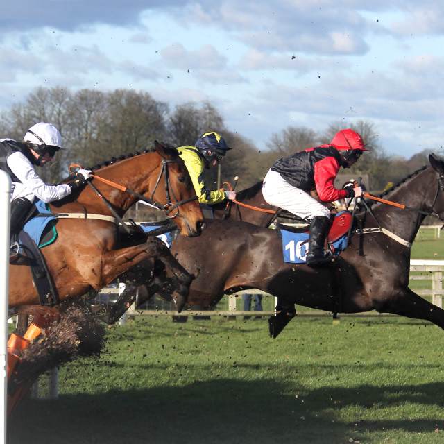 """Wetherby Hurdle Race2"" stock image"