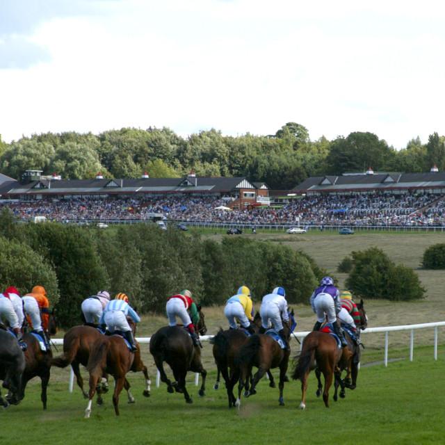 """""""Pontefract Racecourse1"""" stock image"""