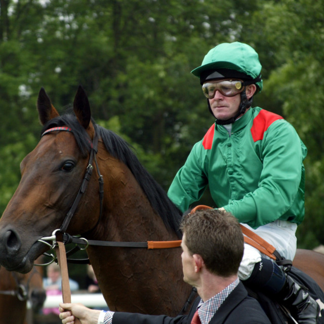 """Mick Kinane and Azamour"" stock image"