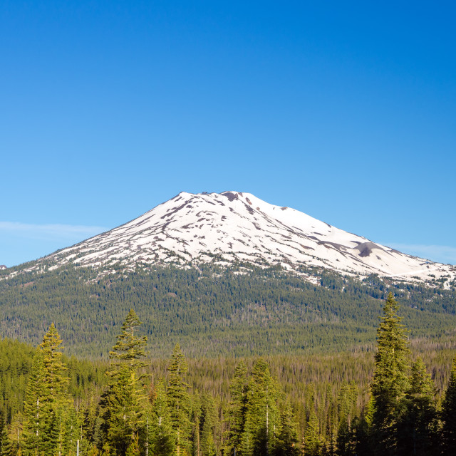 """Mount Bachelor"" stock image"