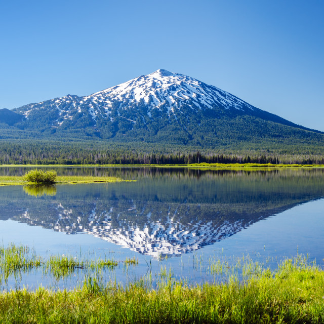 """Mount Bachelor Reflection"" stock image"