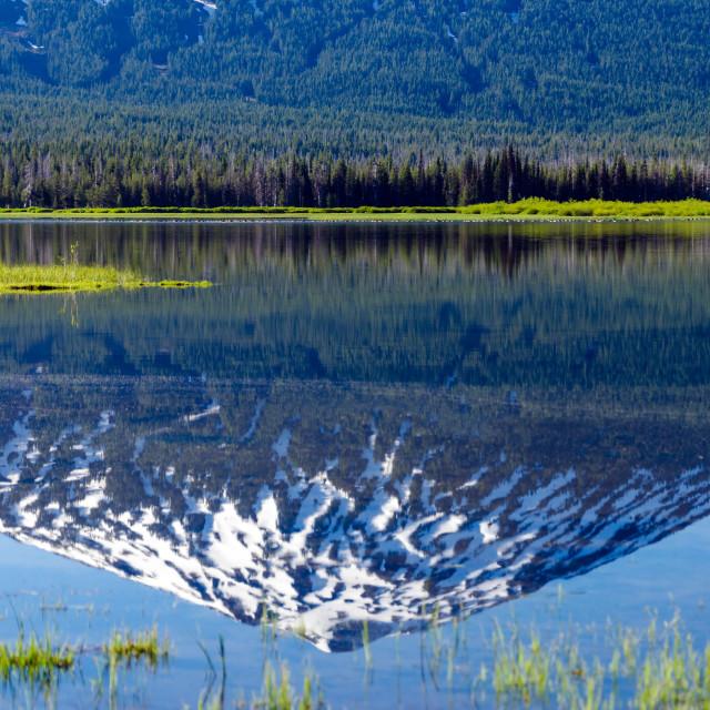 """Mount Bachelor Reflection"" stock image"