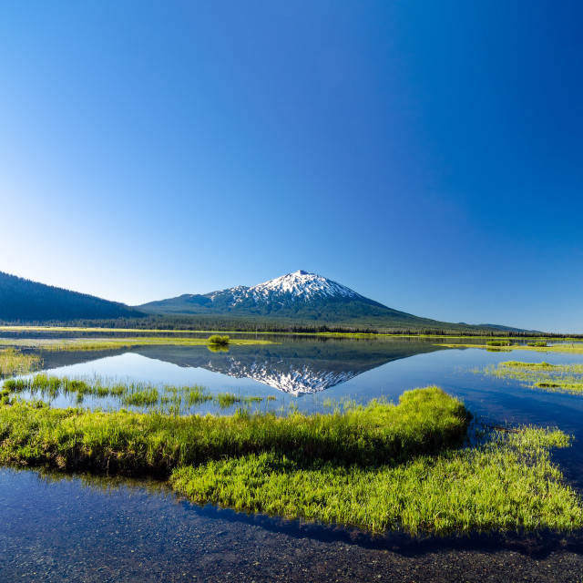 """Mount Bachelor Vertical Reflection"" stock image"
