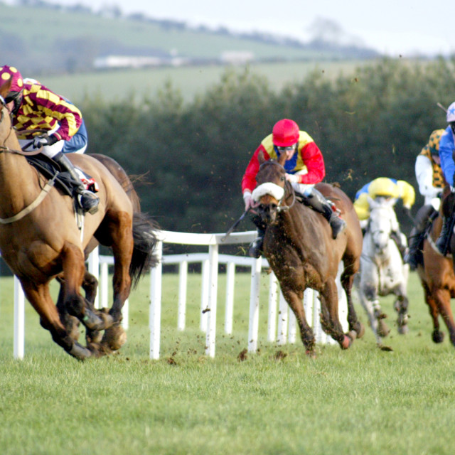 """Final Bend at Punchestown"" stock image"