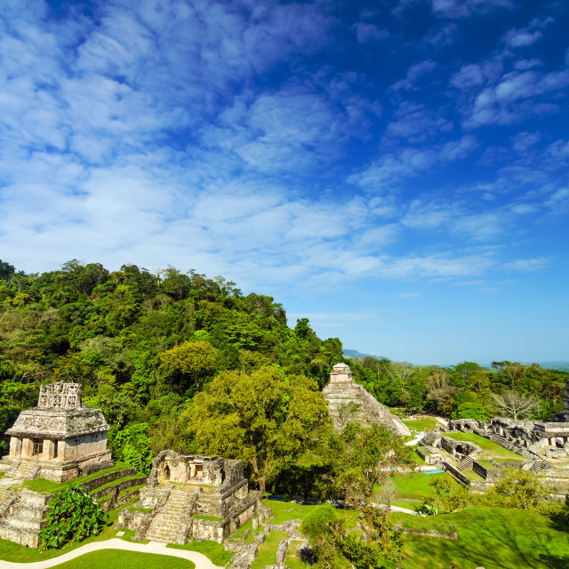 """Palenque View"" stock image"