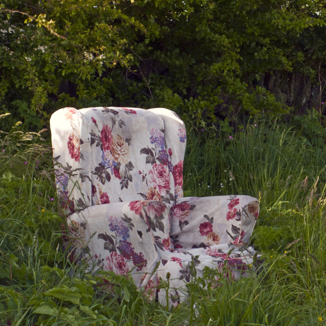 """Armchair in a Field"" stock image"