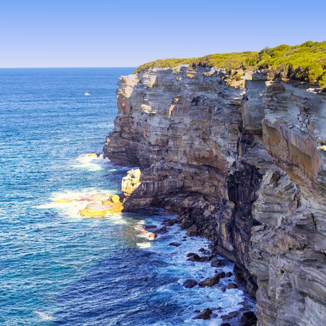 """Sydney National Park"" stock image"