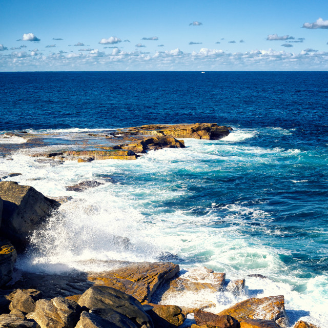 """Sydney Royal National Park"" stock image"