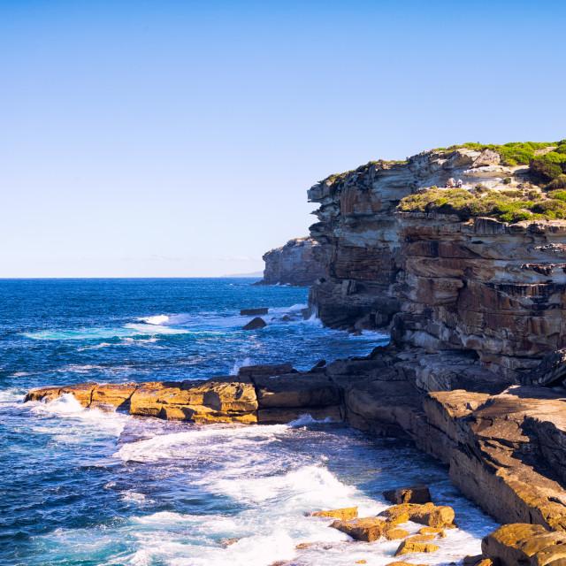 """Sydney Royal National Park"" stock image"