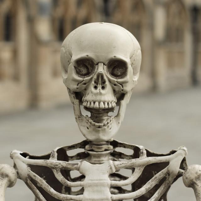 """""""Screaming Skull"""" stock image"""