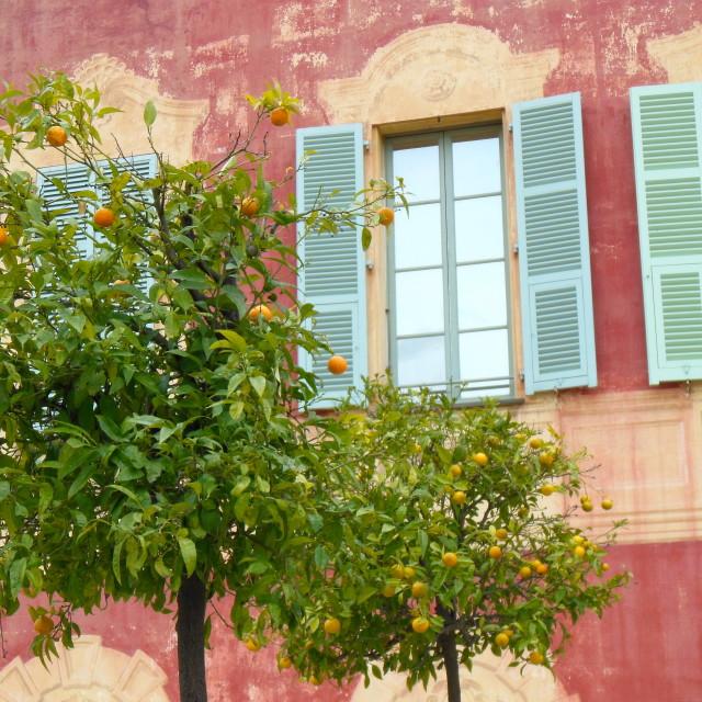 """Nice Matisse"" stock image"