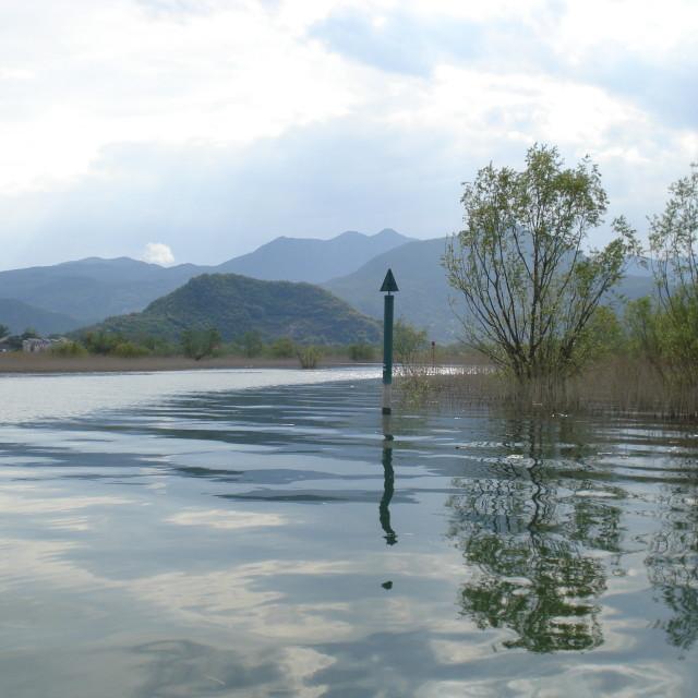 """""""Lake Skadar, Montenegro"""" stock image"""