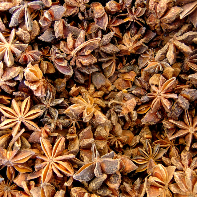 """Star Anise"" stock image"
