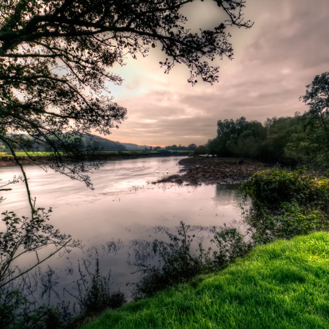 """River Taw"" stock image"