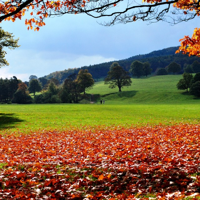 """""""Horae's Song - Autumn"""" stock image"""