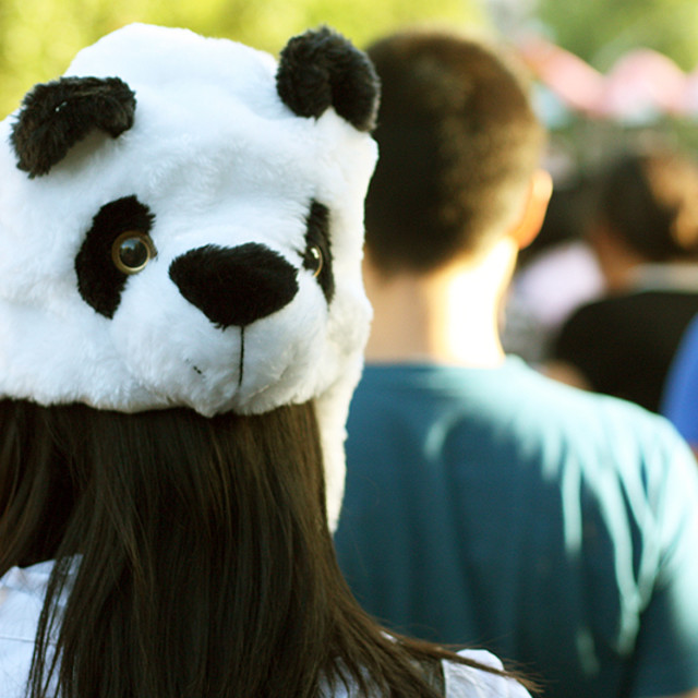 """Panda hat"" stock image"