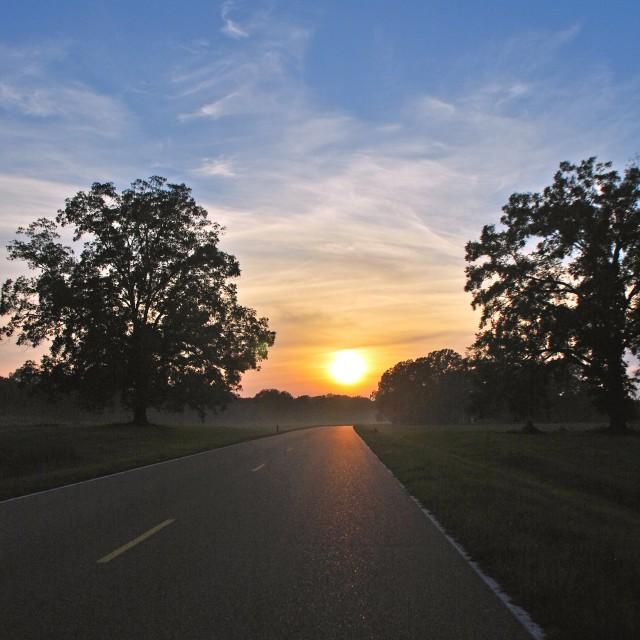 """""""Natchez Trace Sunset"""" stock image"""