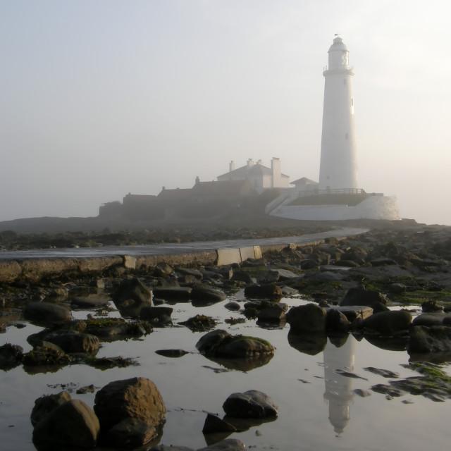 """""""Misty St Mary's Lighthouse"""" stock image"""