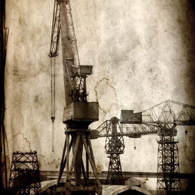 """Swan Hunter Cranes"" stock image"