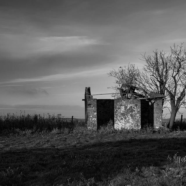 """Abandoned Outbuilding"" stock image"
