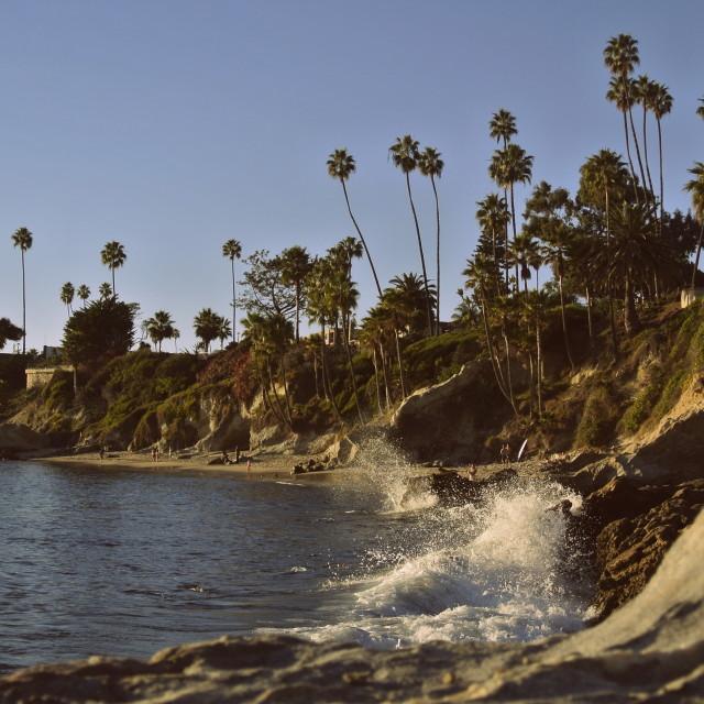 """Laguna Littoral"" stock image"