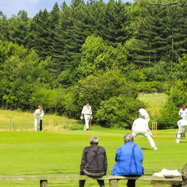 """English village cricket match"" stock image"