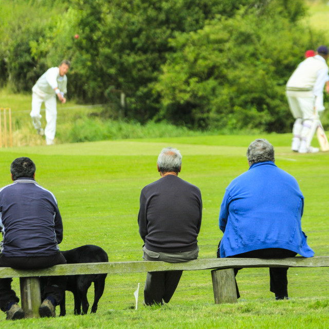 """Traditional English cricket match"" stock image"