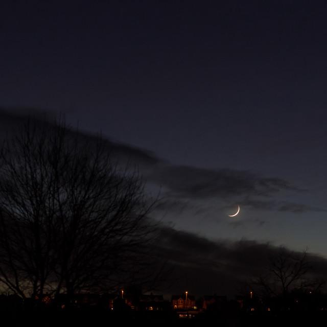 """Delicate Moon"" stock image"