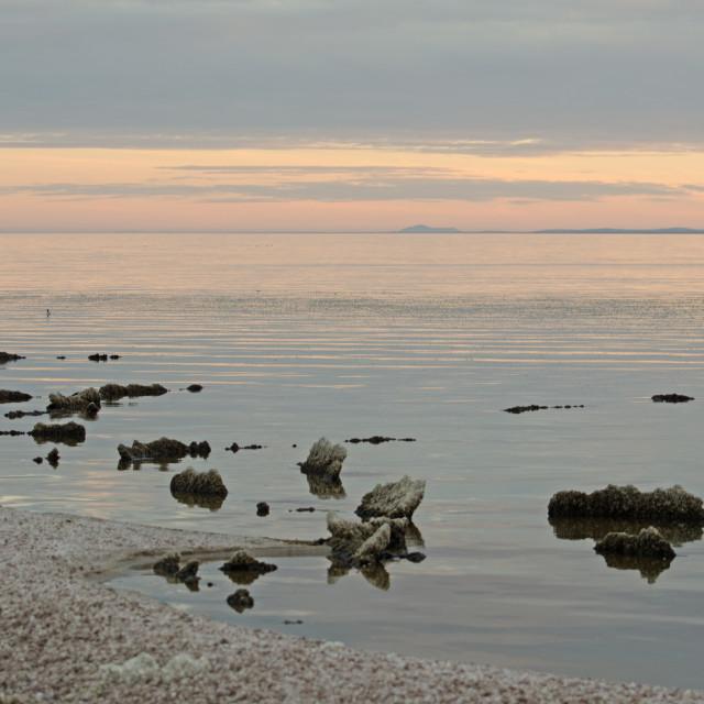 """Salton Sea Scene"" stock image"