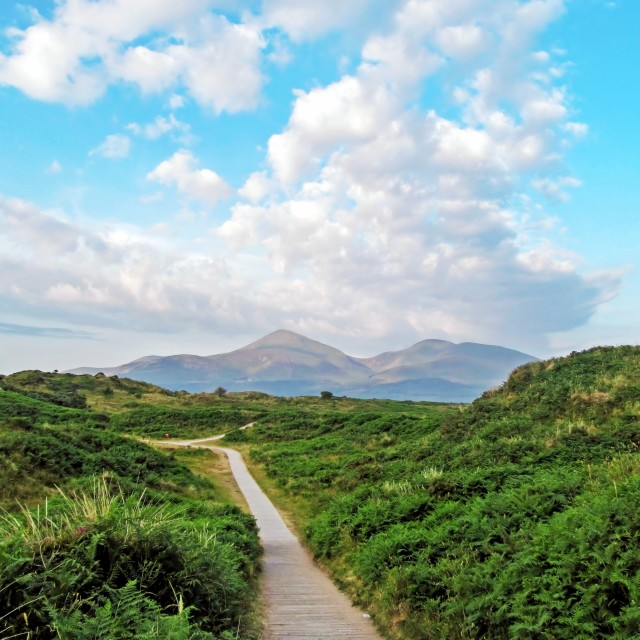 """Murlough National Nature Reserve"" stock image"